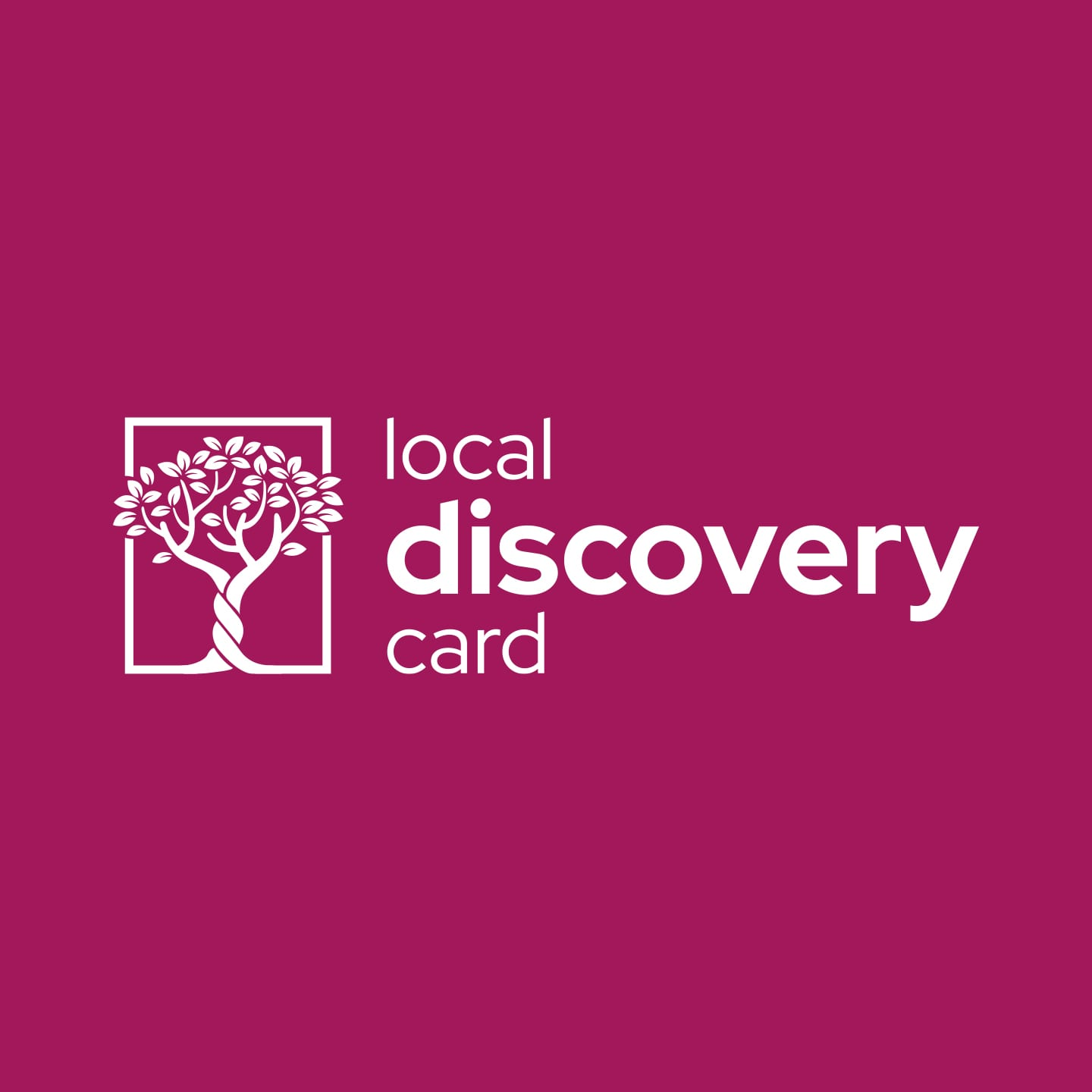 local discovery card